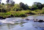 kuruva river